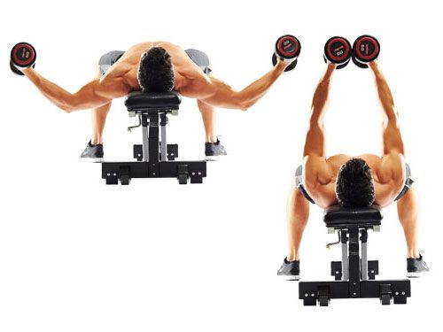 Flat Dumbbell Fly. Workout to Build a Bigger Chest