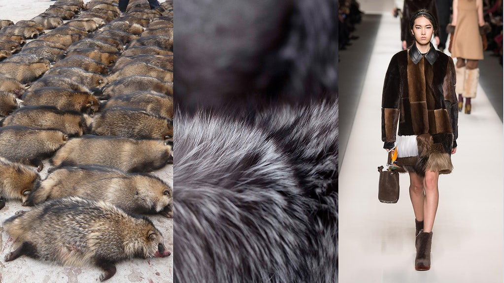 Is the End of Fur Industry Near. Fur Industry Statistics 2020